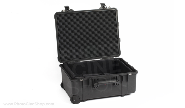 https://photocineshop.com/library/Peli 1564 Case with padded dividers kit (black)